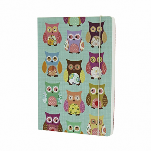 GO STATIONERY OWLS TEAL A5 NOTEBOOK
